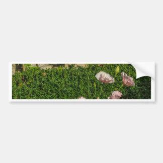 Flores Adesivo
