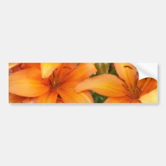 Flores alaranjadas do lírio adesivos