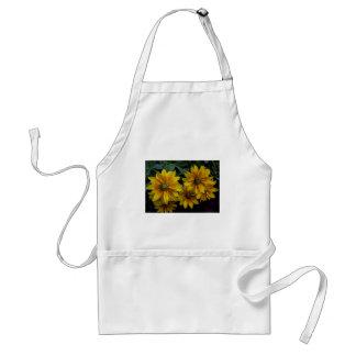 Flores amarelos alaranjado bonitas avental