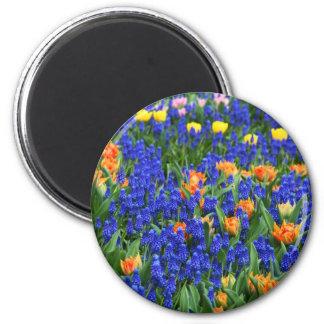 Flores, azul e laranja coloridos ímã redondo 5.08cm