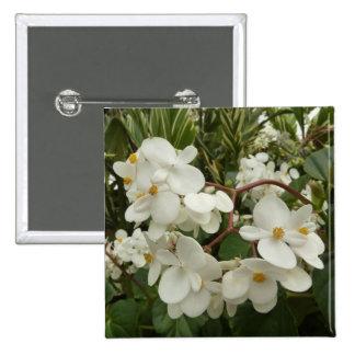 Flores brancas tropicais da begónia bóton quadrado 5.08cm