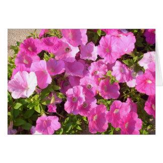 Flores cor-de-rosa cartão