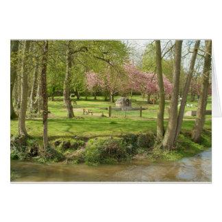 Flores cor-de-rosa dianteiras do rio do prunus em  cartao