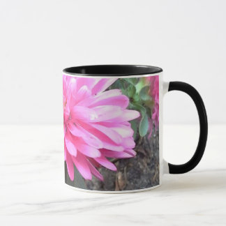 Flores cor-de-rosa do áster caneca