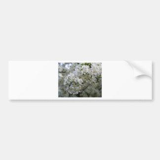 Flores da ameixa adesivos