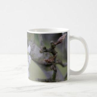 Flores da árvore caneca de café