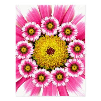 Flores da margarida do rosa quente e do amarelo cartão postal