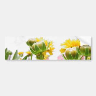 Flores da primavera na flor adesivos