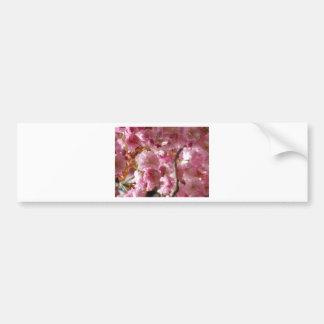Flores de cerejeira adesivos