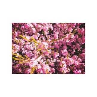 Flores de florescência do primavera impressão em canvas