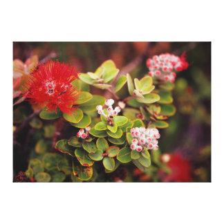 Flores de Lehua em vulcões de Havaí Impressão De Canvas Esticada