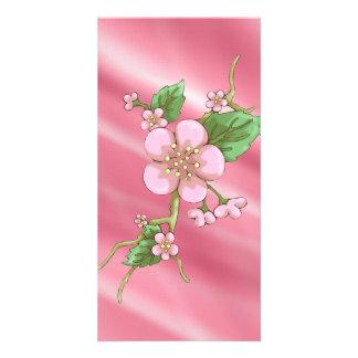 Flores de Sakura Cartões Com Foto