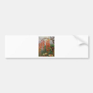 Flores de uma árvore coral e de um rei do adesivo para carro