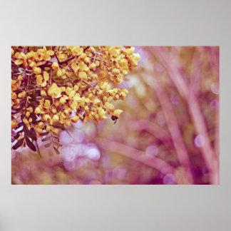 Flores do amarelo da fotografia da natureza posters