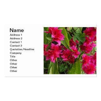 Flores do Bougainvillea Cartão De Visita