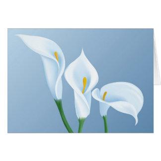 Flores do Calla Cartão