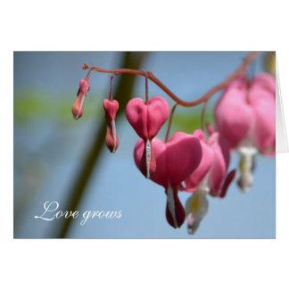 Flores do coração de sangramento cartão comemorativo
