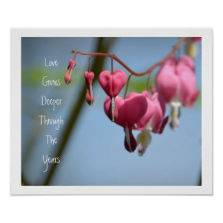 Flores do coração de sangramento posteres