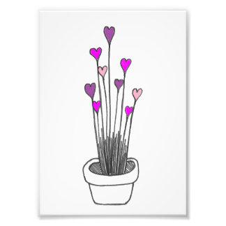 Flores do coração impressão de foto
