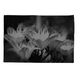 Flores do lírio em preto e branco