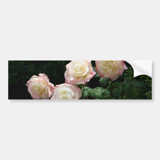 Flores do rosa cor-de-rosa e amarelo adesivos