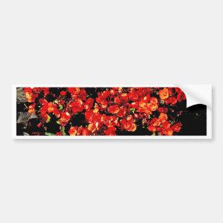 Flores do verão adesivos