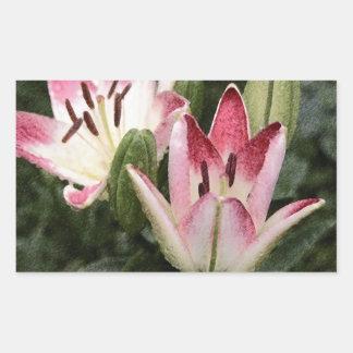 Flores e botões asiáticos do lírio do pirulito adesivo retangular