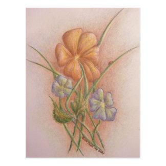 Flores e joaninha cartão postal
