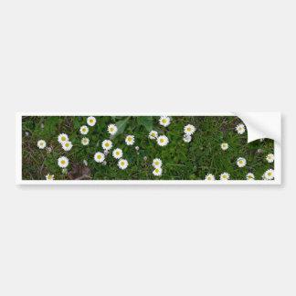 Flores na grama adesivo para carro