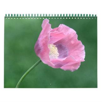 Flores, paisagens e calendário dos animais