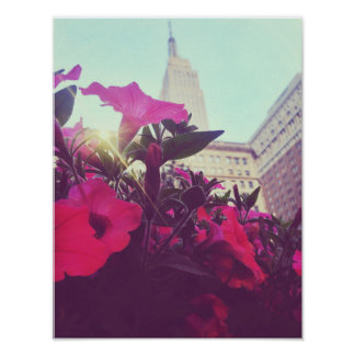 Flores pelo estado do império poster