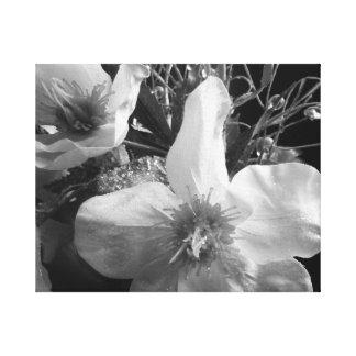 Flores preto e branco do Shimmer Impressão De Canvas Esticadas