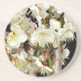 Flores romances sensuais do divertimento dos porta copos de arenito