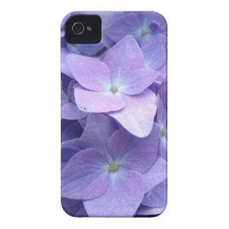 Flores roxas capinhas iPhone 4