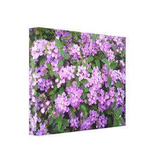 Flores roxas pequenas impressão de canvas envolvida