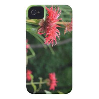 Flores selvagens capa para iPhone 4 Case-Mate