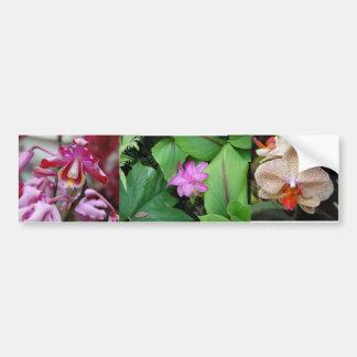 Flores tropicais adesivo para carro