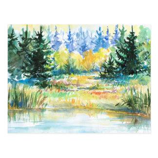 Floresta Cartão Postal