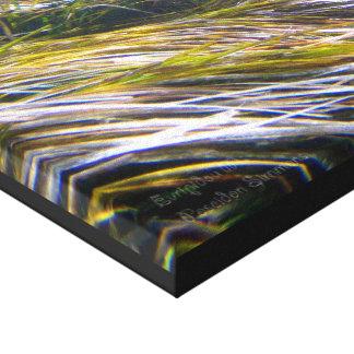 Floresta da grama de Netuno em Chipre subaquático Impressão Em Canvas