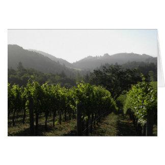 Floresta do vinhedo da manhã cartão comemorativo