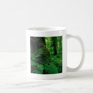 Floresta Ireland da árvore Canecas