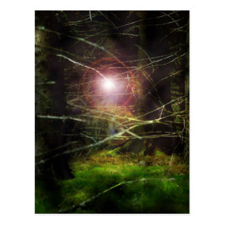 Floresta Mystical