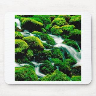 Floresta Oregon de Umpqua das quedas do espaço liv Mouse Pad