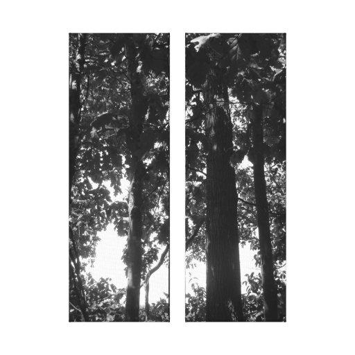 Floresta preto e branco impressão de canvas esticada