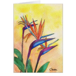 flowers cartões