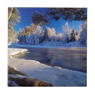 Fluxo do gelo do rio da natureza azulejo