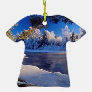 Fluxo do gelo do rio da natureza ornamentos