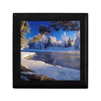 Fluxo do gelo do rio da natureza porta jóia