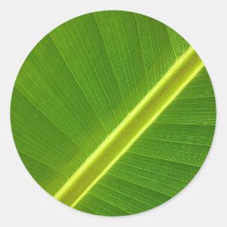 Folha de bananeira adesivo