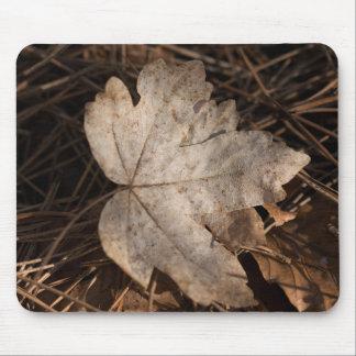 Folha do outono mouse pad